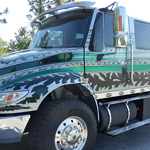 2015 Silver and Green Durastar